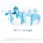 Boa-Indigo