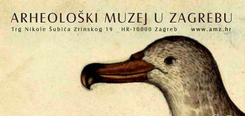 Jelena Marohnić-Diomedove ptice
