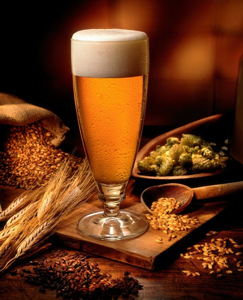 Prirodni sastav- pivo