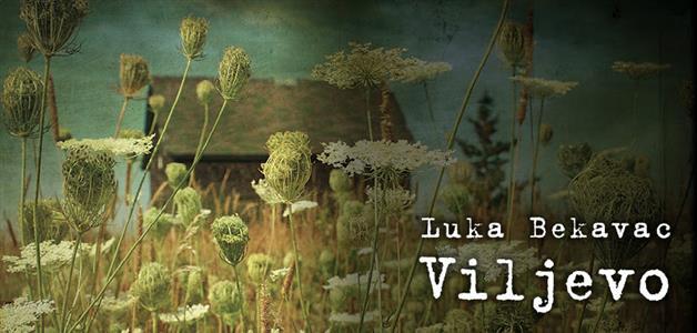 Viljevo-Luka Bekavac
