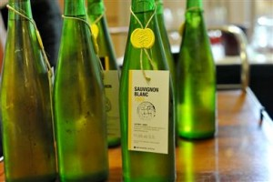 2-Sauvignon blanc-arhivski