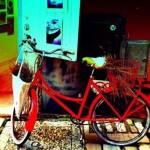 Barbara Bračun- BiciklArt