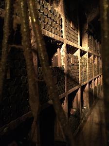 2-Ptuj-vinski podrum