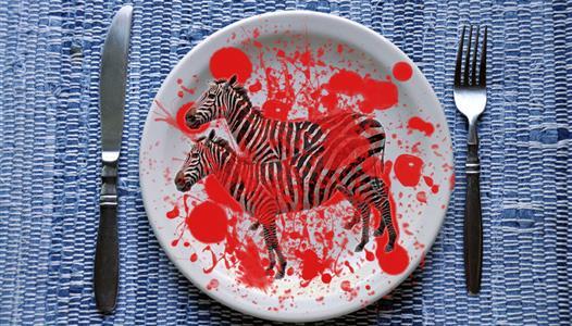 Zebra na tanjuru