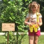 Tetrapak-drvo-Bundek-Vida_Milanja