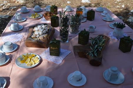 Čajanka-Vrtovi lunjskih maslina 2