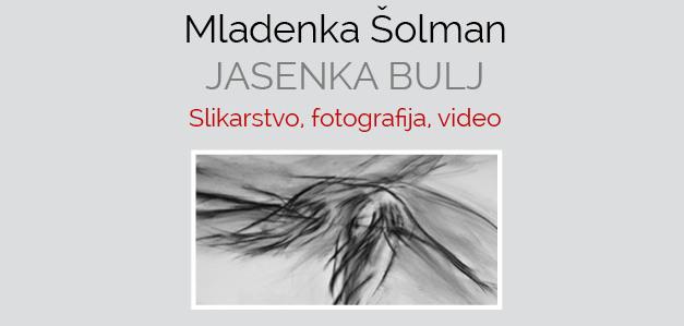 Jasenka Bulj-monografija