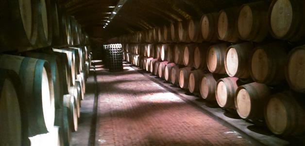 Feravino vinarija-Feričanci