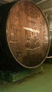 Kutjevo dd-vinarija