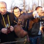 Kutjevo-Vincelovo-2016-zalijavanje-vinograda
