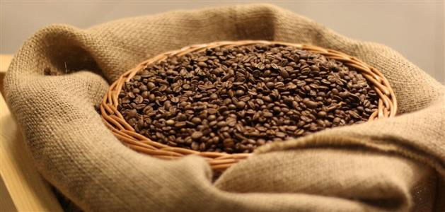 cogito-kava-honduras