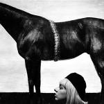 Ognjen_Karabegović-Djevojka_s_crnim_konjem