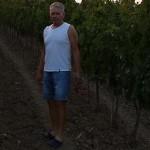 Tomislav Glavić u vinogradu