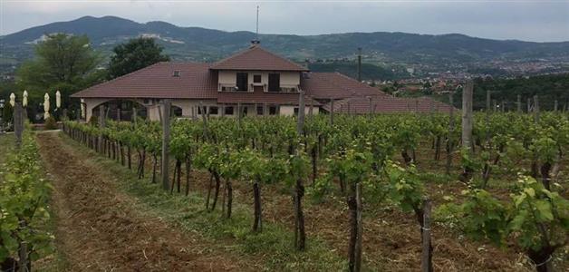 Šumadija-Oplenački vinograd